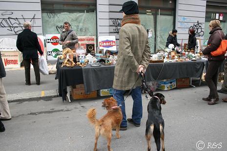 ナヴィリオ骨董市と犬2