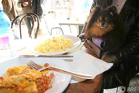 ナヴィリオ骨董市での昼食