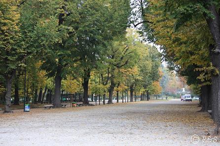 プッブリチ公園3