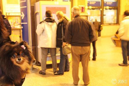 中央駅切符売り場とベル2