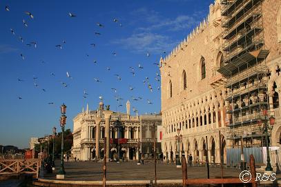 朝のドゥカーレ宮殿と鳩2