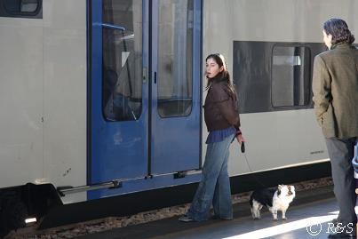 サンタ・ルチア駅のホームの犬