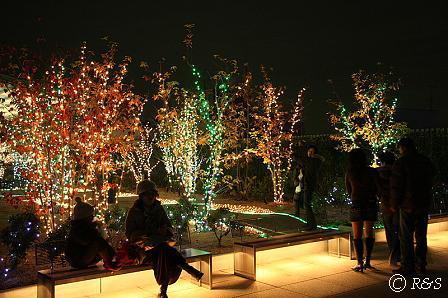 成城コルティ・イルミネーション1