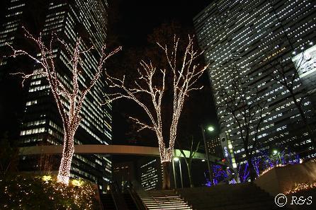 新宿ビル・イルミネーション5IMG_3928