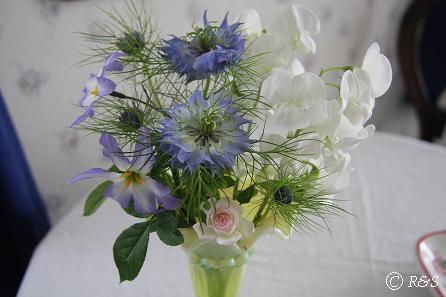 花瓶5IMG_9618