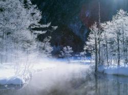 雪景色4_convert_20110212202243