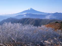 富士山_convert_20110408215230