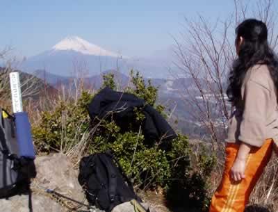 城山山頂からの富士山