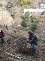 広沢寺清掃集会2008植樹2
