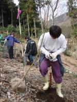広沢寺清掃集会2008植樹1