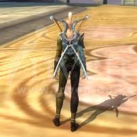 剣士さん 2