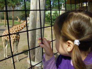 field trip zoo