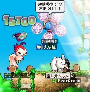 071126hanehimako.jpg