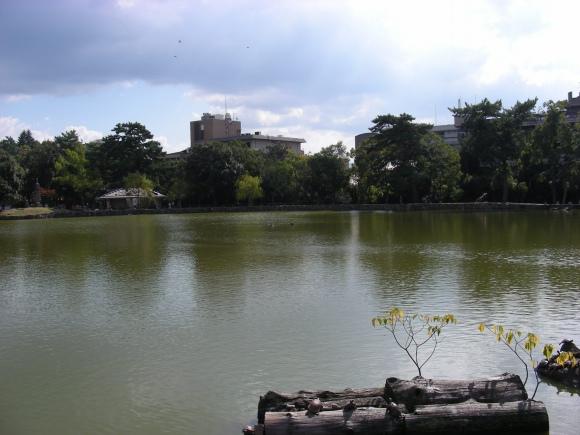正倉院唐招提寺 053