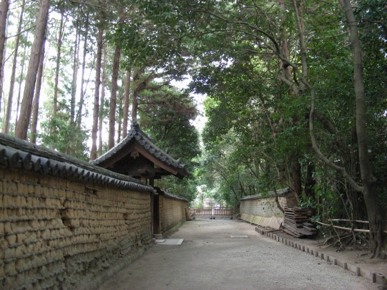 正倉院唐招提寺 099