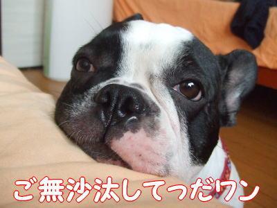 09_09_30_3.jpg