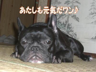 09_09_30_4.jpg
