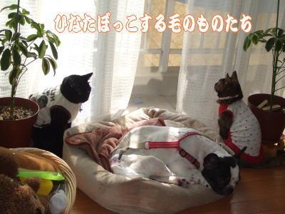 09_10_13_5.jpg