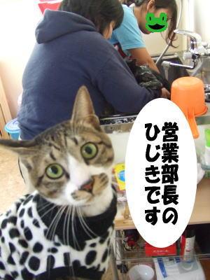 07_12_12_1.jpg