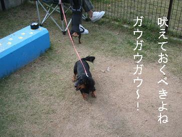 うみふれ散歩 126