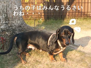 うみふれ散歩 142