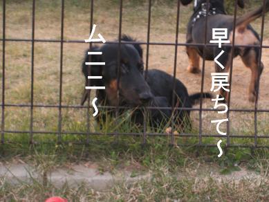 うみふれ散歩 149