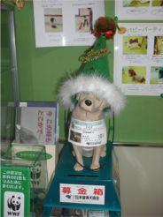 2007.12.12byoin-6.jpg