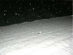 20080226nii-don.jpg