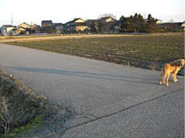 20080309nii.jpg