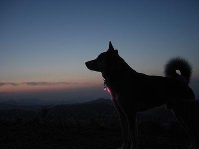 高仙山の日暮れ