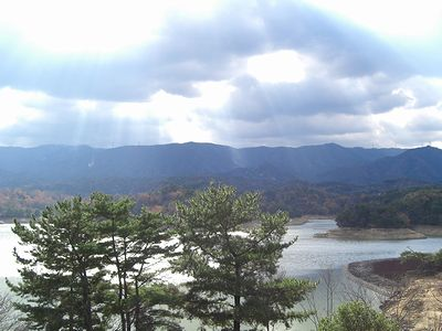 森林公園を望む丘の上