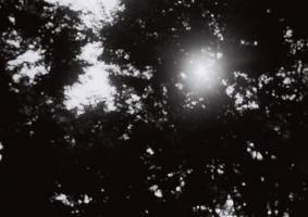 f900721037.jpg