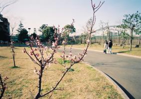 f940206b011.jpg