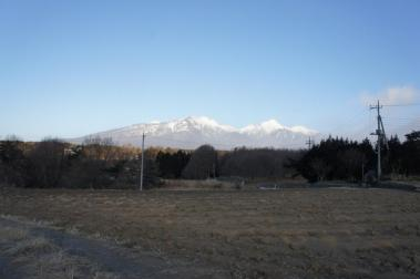 20110111-1.jpg