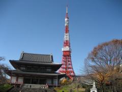 tokyotower-zojoji1.jpg