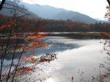 20071108_5.jpg