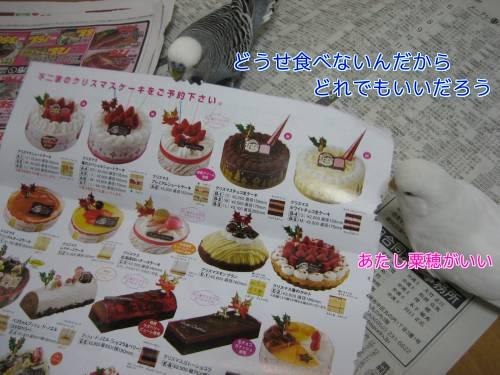 クリスマスケーキ②