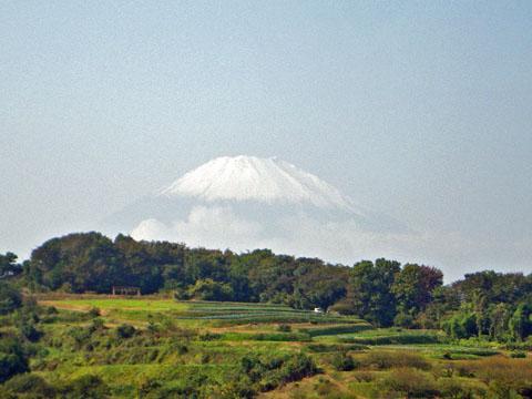 富士山も綺麗