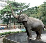 小田原城址公園動物園で