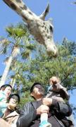 宮崎市のフェニックス自然動物園で