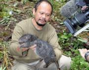 インドネシアのニューギニア島西部フォジャ山地の原生林で発見(AP)