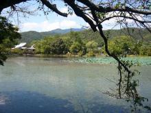 コピー ~ 京都旅行 002