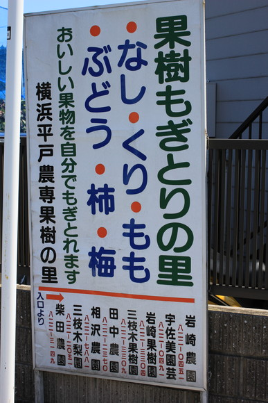 20110910h11.jpg