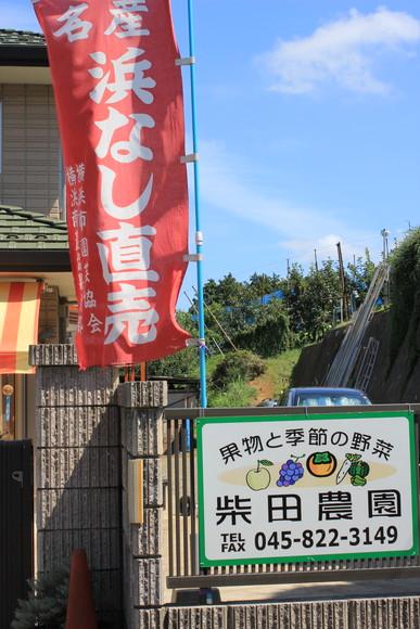 20110910h7.jpg