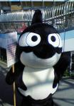 mizuho20091004_2.jpg