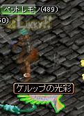 20071110191040.jpg