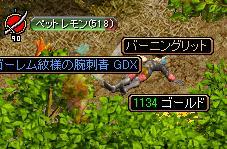 20071227125510.jpg