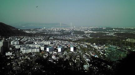 六甲山系20015158