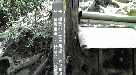 六甲山系201151524