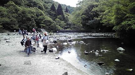 六甲山系201151527